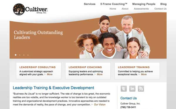 Website design and development for consulting firm