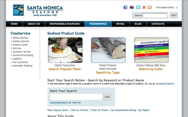 Website enhancements for online product guide
