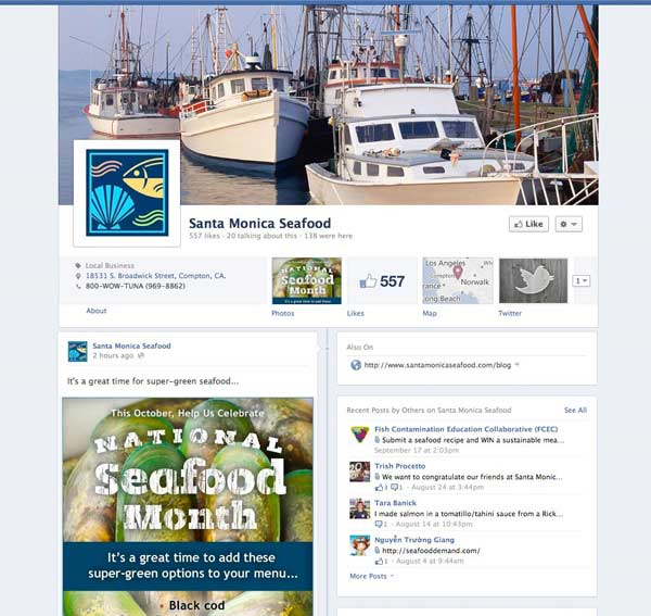 Facebook page customization for timeline format