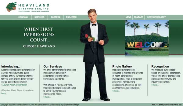 Original website design for Vista landscape maintenance contractor